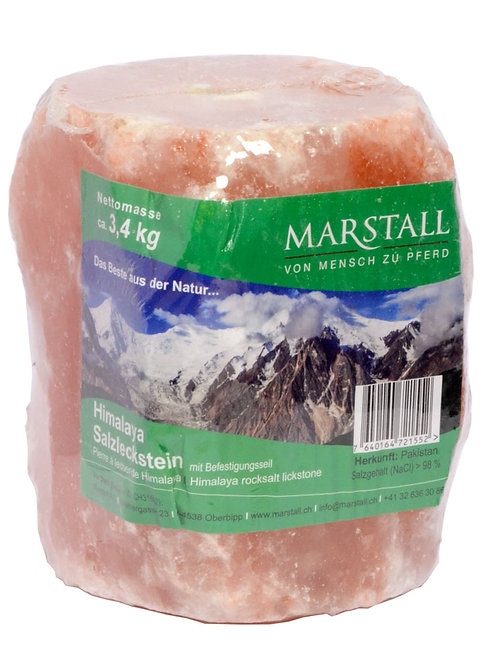 Pierre à sel de l'Himalaya