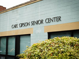 gipsoncenter-01.jpg