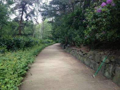 The broadwalk