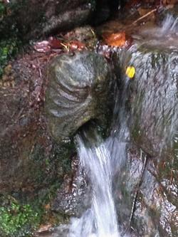 Cascade Gargoyle