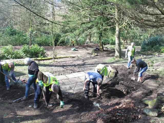 Planting up the Azalea walk