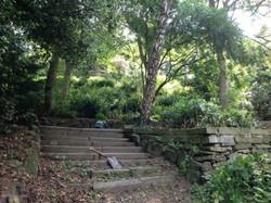 Numerous steps