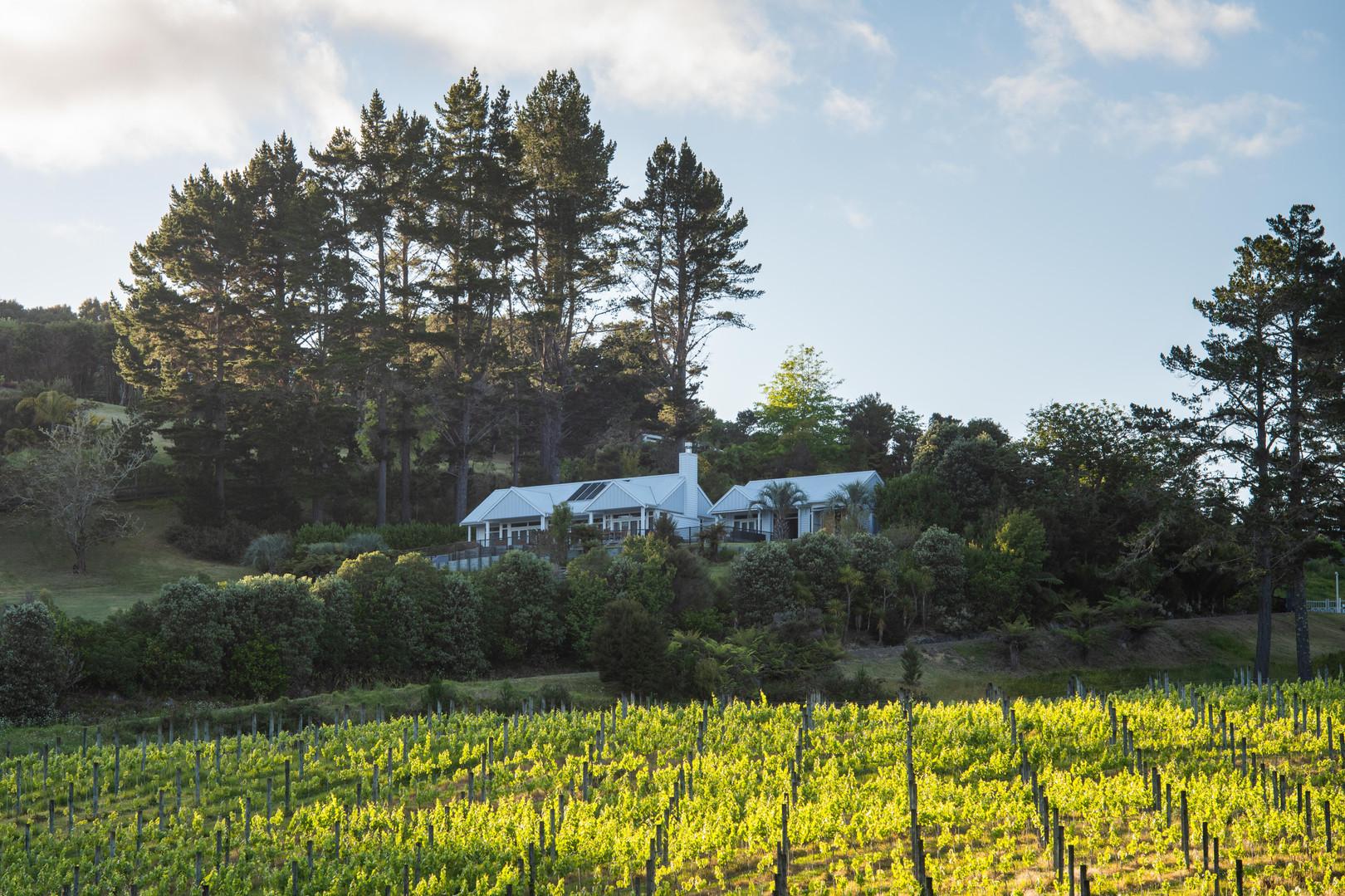 Paroa Bay Winery