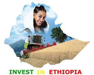 invest_in_ethiopia.jpg