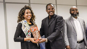 Ethiopia grasps information about Brasília's Urban Planning