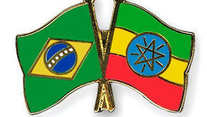 Ethiopia seeks further integration with Brazil