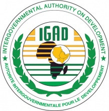 IGAD denounces SPLM/A–In-Opposition's attack in Nassir