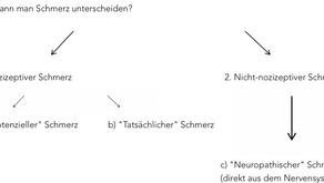 Schmerzphysiologie: Teil 1