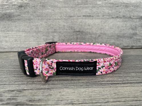 Pink Blooms dog collar