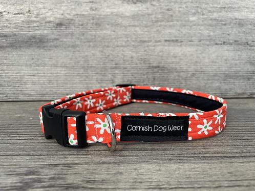 Crazy Daisy on Coral dog collar