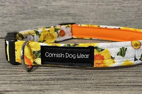 Oddles of Daffodils dog collar