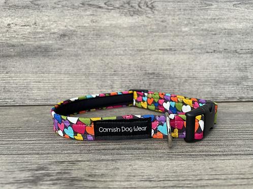 Winter Love dog collar