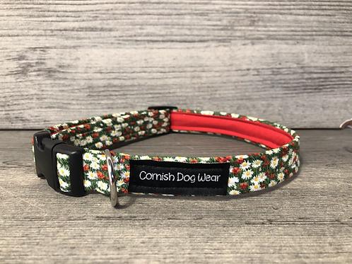 A Field Full of Daisy's Dog Collar