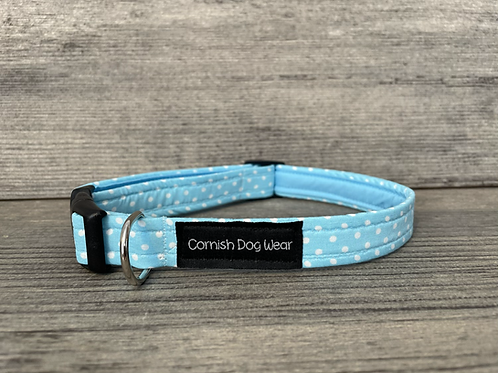 Turquoise and White spot dog collar