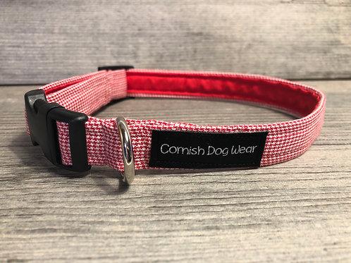 Cornish Dog Wear dog tooth collar