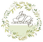 Joy Succulents Logo. Joy Succulents - Give the Gift of Joy. Succulent for Events, functions, birthdays, weddings, gifts