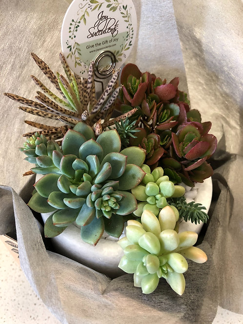 Classy- Marble Pot