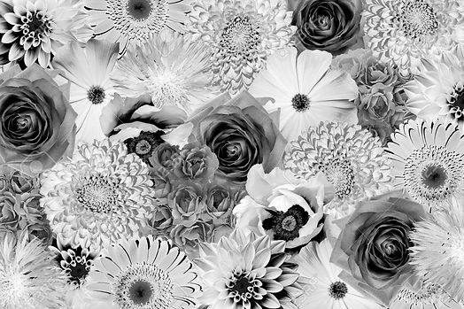 54976163-vintage-black-and-white-flowers