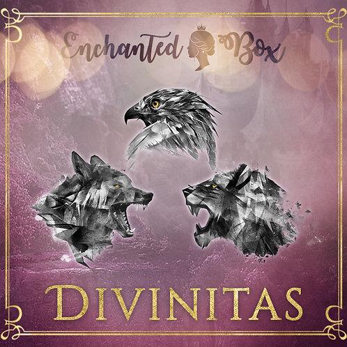 "Enchanted Box ""Divinitas"""