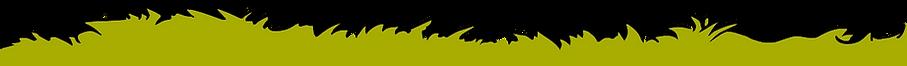 grass-yellow-e4fd22677307abd6683d813e41d