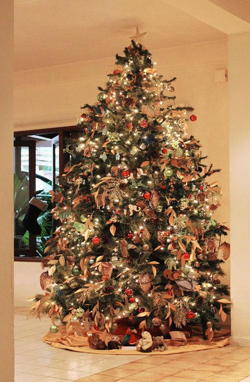 christmas11_web1.jpg