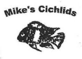 mikes Cichlids.jpg