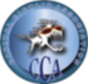 CCA.png