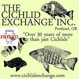 Cichlid Exchange.jpg