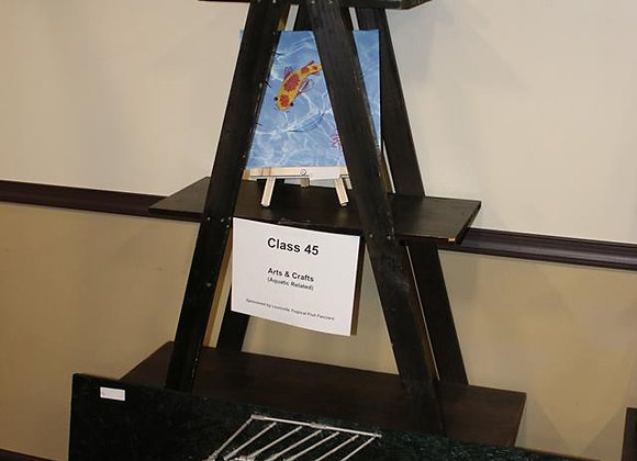 Class 48 -Arts & Crafts (Aquatic Related)