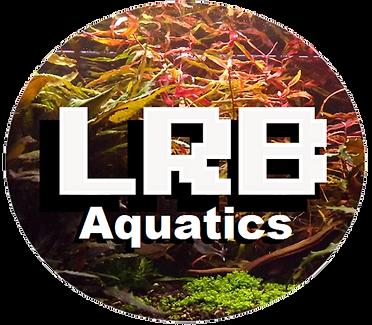 LRB aquatics.png