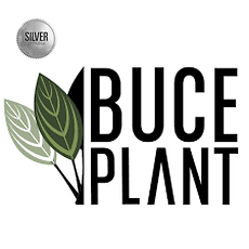 buceplant.png