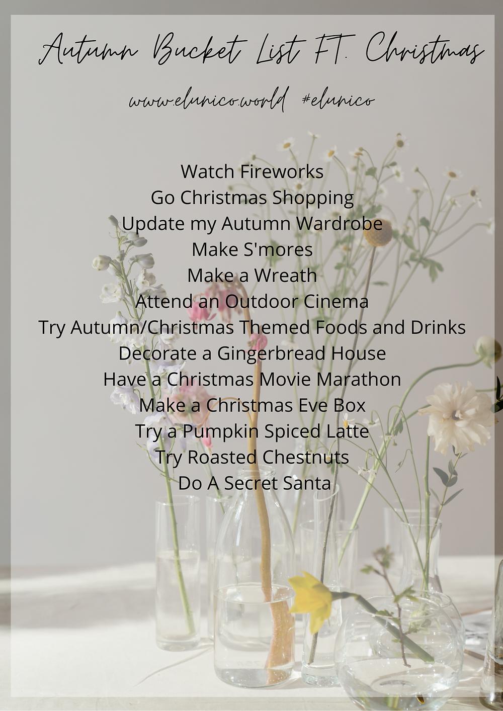 el unico, el unico blog, elunico, autumn, bucket list, christmas, november, fireworks, chestnuts, snow, to do, how to