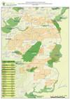 Áreas com pedidos de Prospecção e Pesquisa e Concessão de Exploração - Região das Beiras