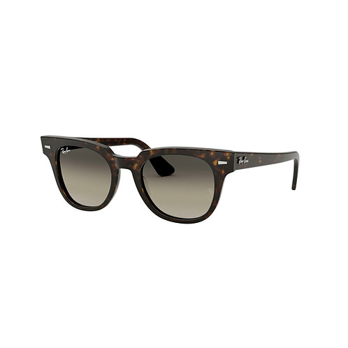 Ray-Ban LUXO-130 REF. 0RB2168902/3250