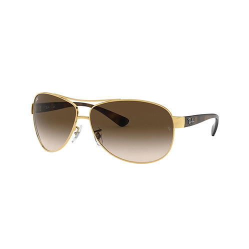 Ray-Ban LUXO-001 REF. 0RB3386001/1363