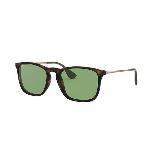 Ray-Ban LUXO-042 REF. 0RB41876393/254