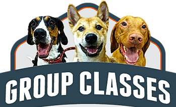 simpawtico_group_badge_large-400x400.png