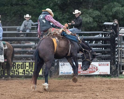 Rodeo 4 (1 of 1).jpg