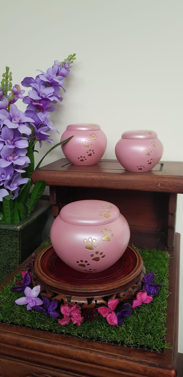 Pink Odyssey Urn