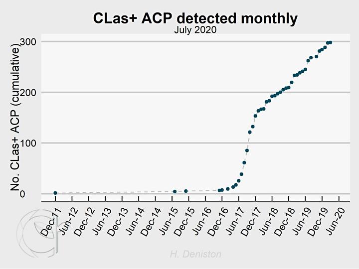CLas+ ACP detected