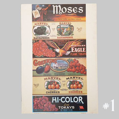 """14"""" x 20"""" Berry Posters"""