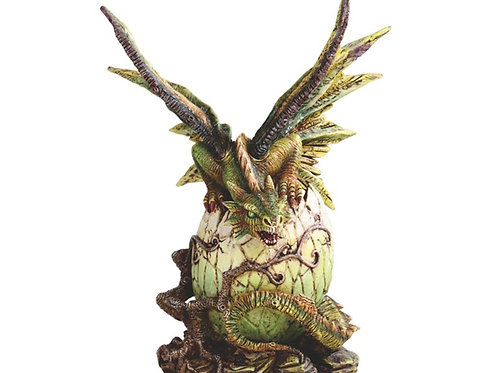Green Dragon out of Egg