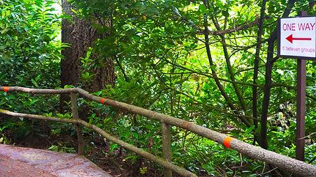 photo of railing with orange 6 foot markings
