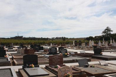 Graves-website.jpg