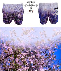 Shkedia Flowers3.jpg