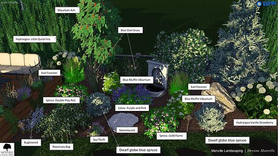 Backyard planting plan.JPG