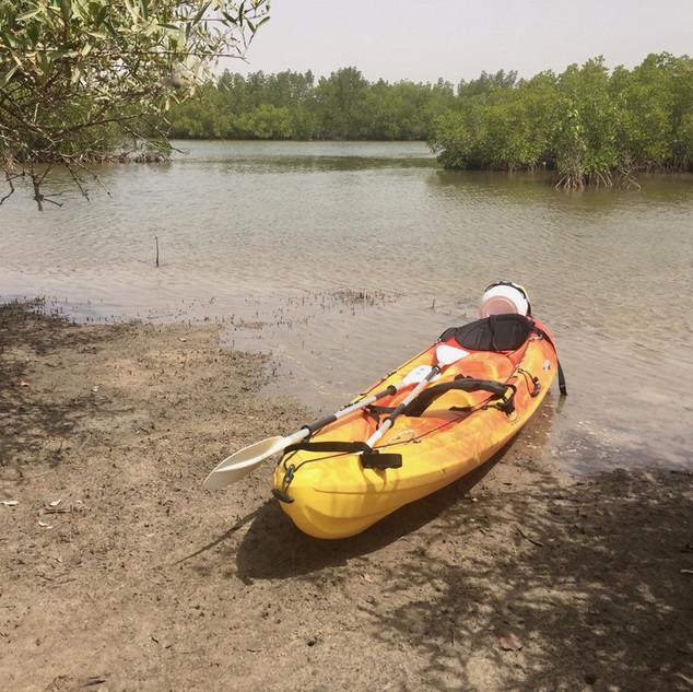 kayak aux Barracudas