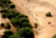 O'a Sénégal Sahel.jpeg