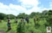 Jardin de keur sambel