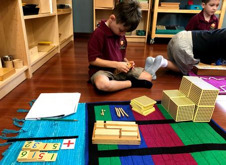 Montessori After Primary